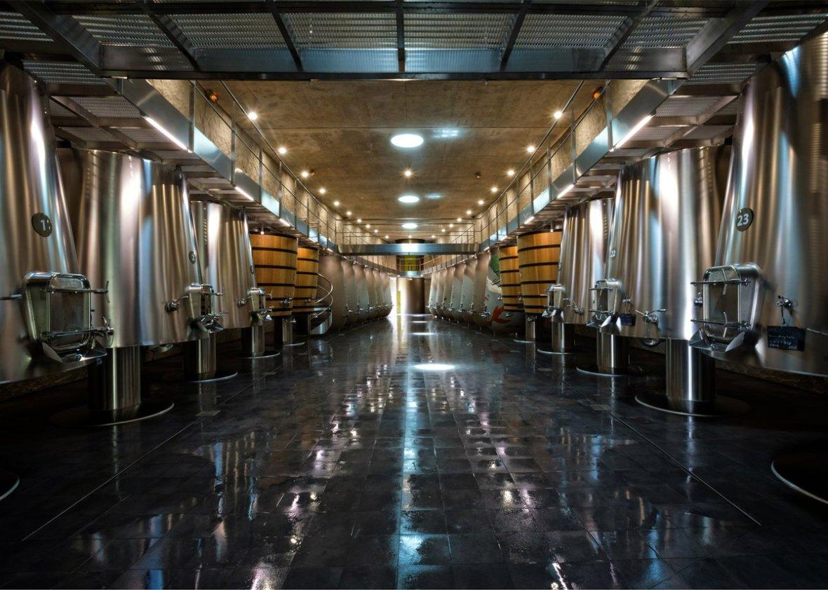 Philippe-Starck-Luc-Arsène-Henry-wine-cellar-Château-les-Carmes Haut-Brion-4