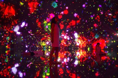 teamlab-dmm-planets-world-of-wonders-8
