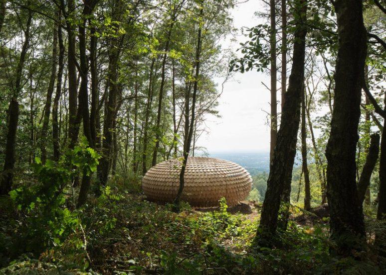 giles-miller-perspectives-pavilion-england-5